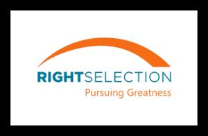 WebsiteLogoRightSelection_The4PSolutions