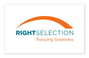 WebsiteLogoRightSelection_The4PSolutions